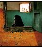Antonella Monzoni-Silent beauty 2004